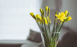 The Lazy Homeowner's Guide to Spring-Cleaning