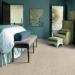 Carpet, Hardwood or Laminate?